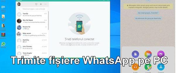Ladda ner WhatsApp-filer till din dator