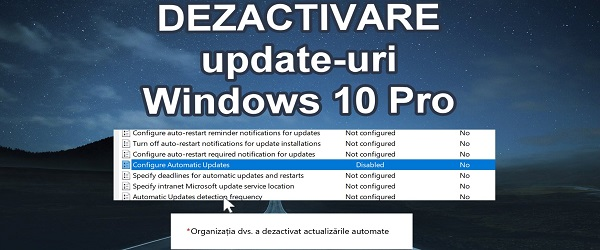 Oprire Windows Update Windows 10 Pro