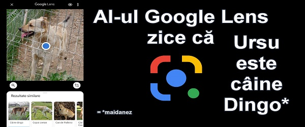Tutorial de uso real de Google Lens